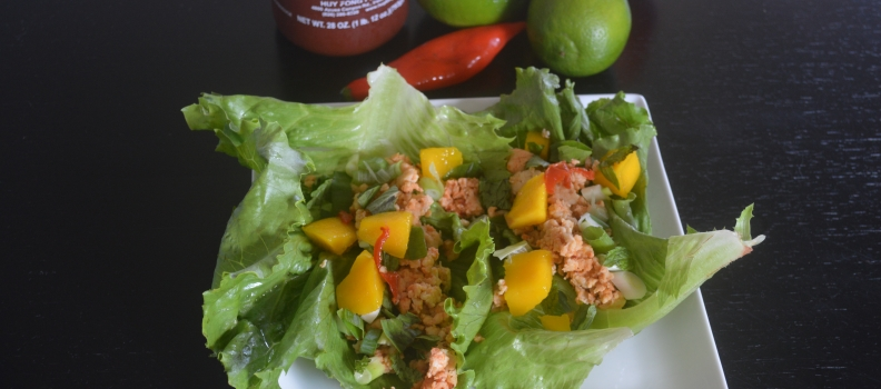 Thai Chicken Lettuce Wraps {Healthy Recipe}